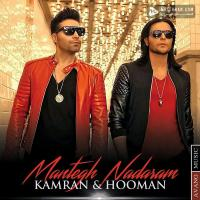 Kamran and Hooman Mantegh Nadaram