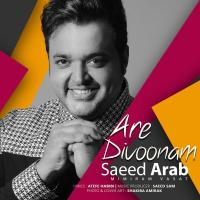 Saeed Arab Are Divoonam