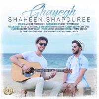 Shaheen Shapouree Ghayegh