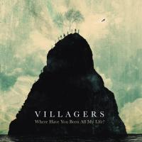 Villagers Everything I Am Is Yours