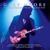 Gary Moore The Sky Is Crying (Live)