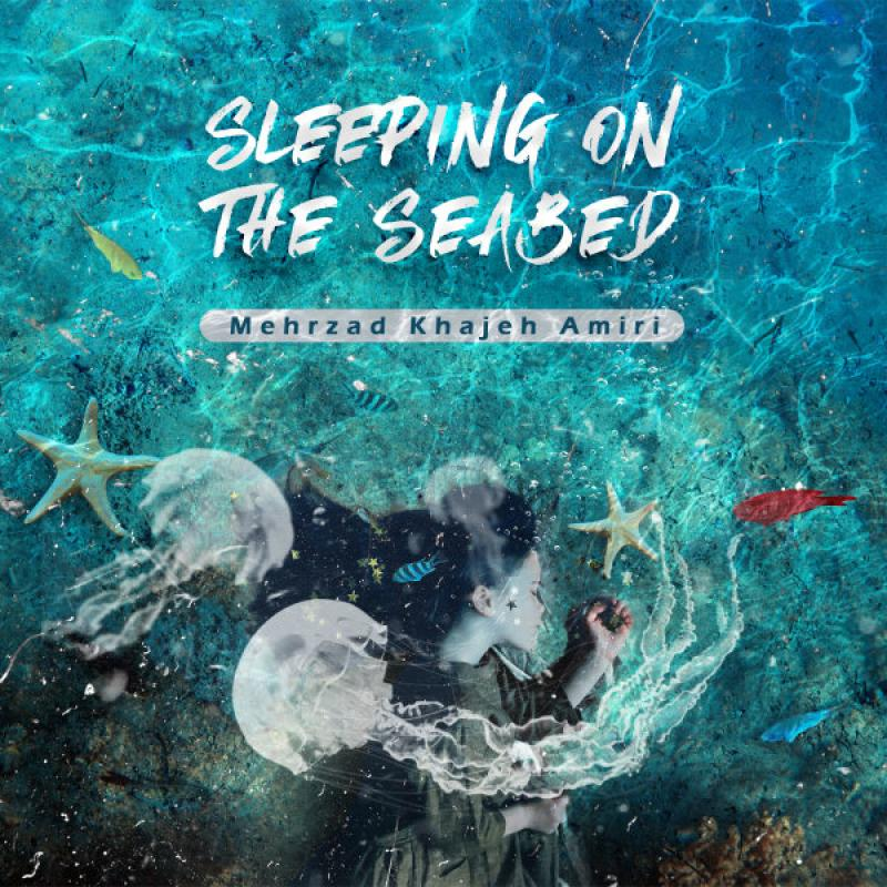 Mehrzad Khajeh Amiri Sleeping On The Seabed