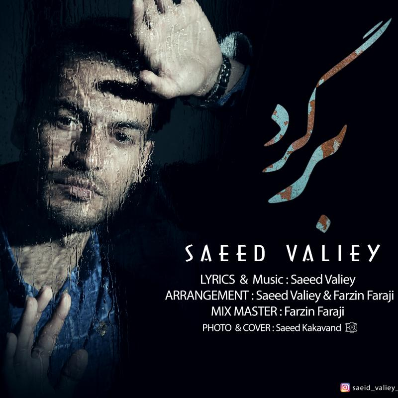 Saeed Valiey Bargard