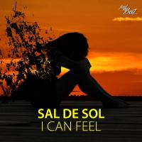 Sal De Sol I Can Feel