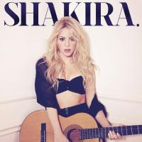 Shakira You Don't Care About Me